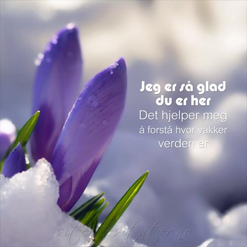 korte dikt om kjærlighet norge