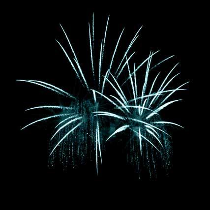 sang nytt år